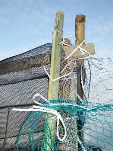 ブルーベリー防鳥ネットのドア_f0018078_7484120.jpg