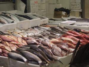 ロンドンの築地市場Billingsgate Fish Marketへ!しかし・・・_e0030586_23265487.jpg