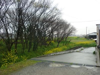 国道386号線沿い、「まきば」のかしわおにぎりとお赤飯。_e0188087_2355963.jpg