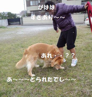 b0127531_19503997.jpg