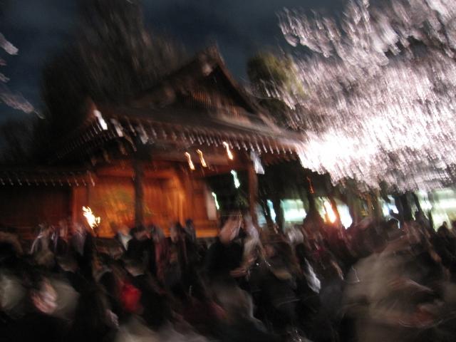 夜桜能_f0180433_23391029.jpg