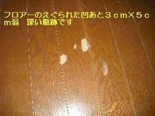 f0031037_18342136.jpg