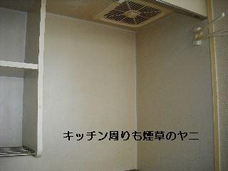 f0031037_1837552.jpg