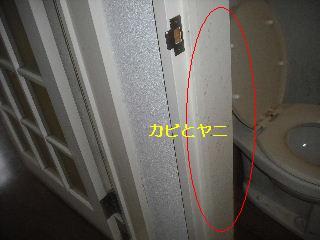 f0031037_1839137.jpg