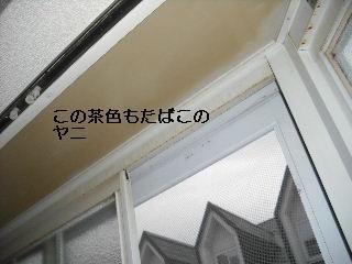 f0031037_18433182.jpg
