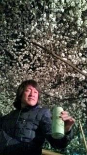 夜桜お十_a0093054_14504654.jpg