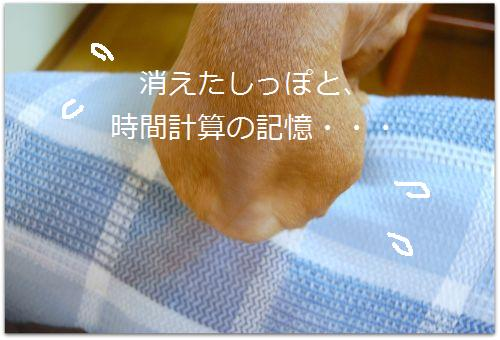 b0112758_15425623.jpg