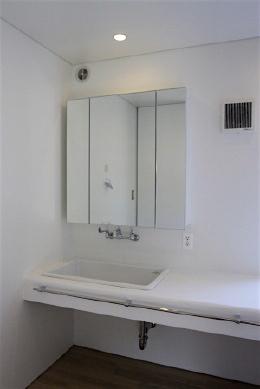 「蓮根の家」 テラス 洗面 手洗い_f0230666_17275486.jpg