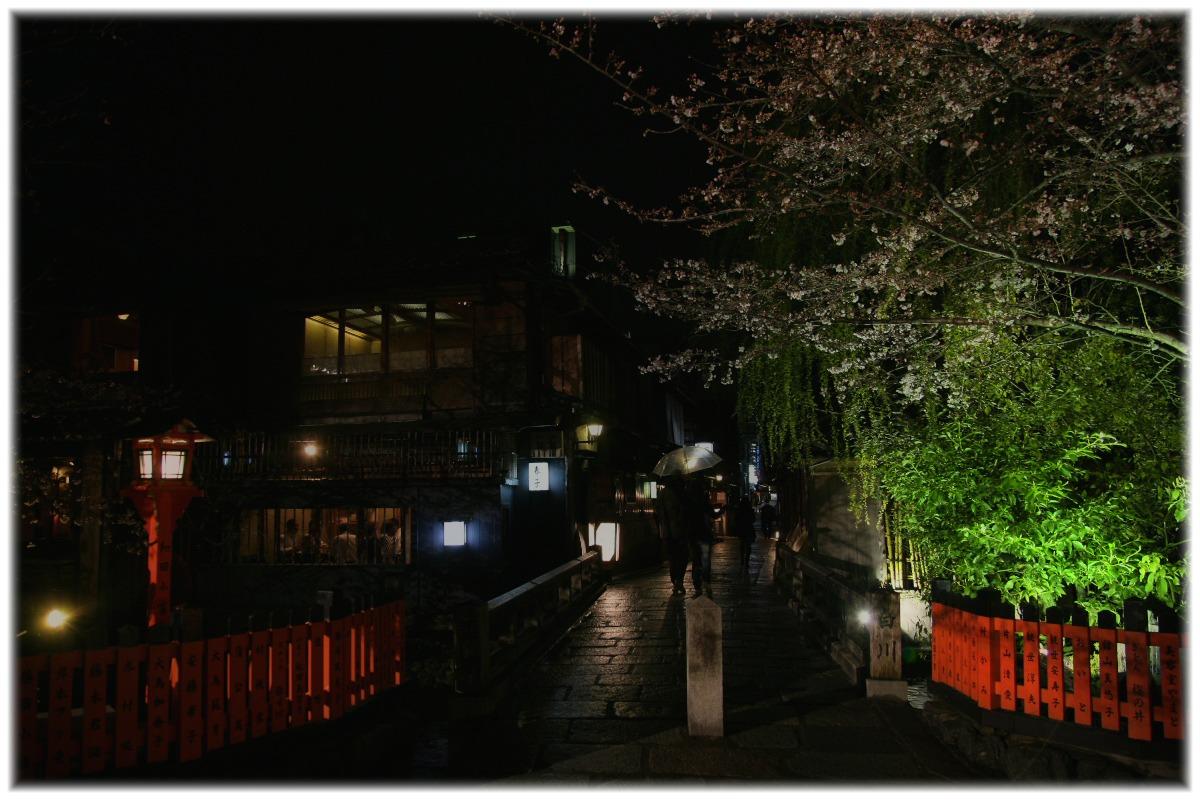 祇園 白川 桜 2010  1_f0021869_0392248.jpg