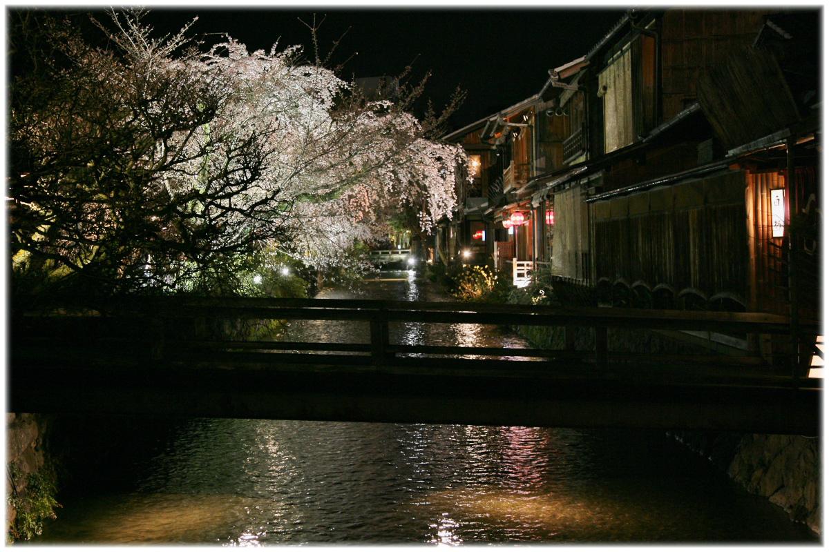祇園 白川 桜 2010 2_f0021869_22112862.jpg