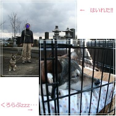 c0124577_16275033.jpg