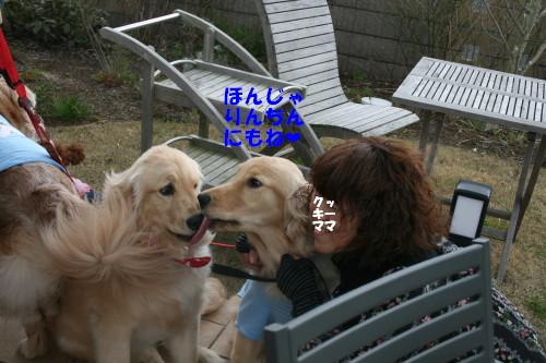 e0114977_16551912.jpg
