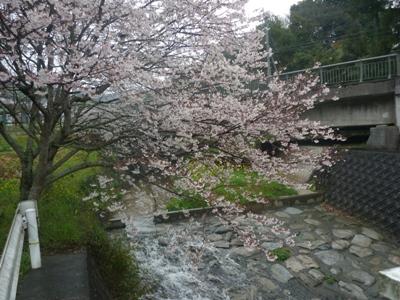 雨の夜須町。【1】_e0188087_0151915.jpg