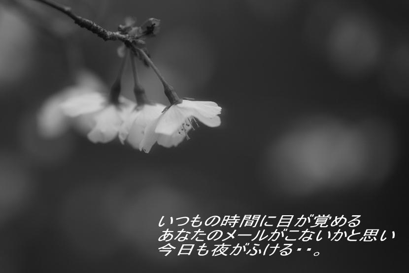 c0111995_20562792.jpg
