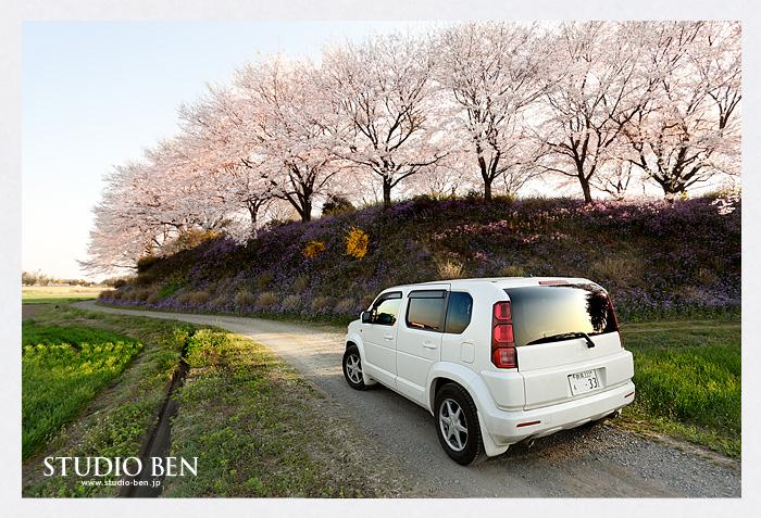 冬景色から一転、春へ..._c0210599_23938.jpg