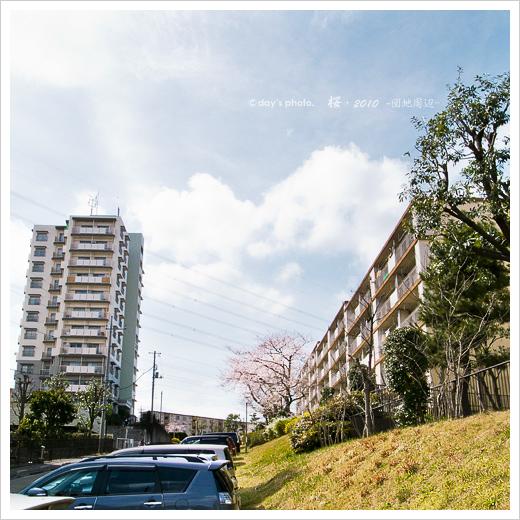 団地桜景 #01_e0117517_18183079.jpg