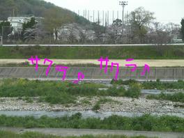 f0225924_1524526.jpg