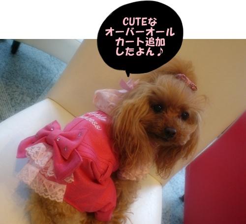RUPY追加しました☆_b0084929_15493676.jpg