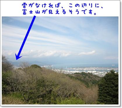 ドタバタしながらも、、、桜!_c0049950_237522.jpg