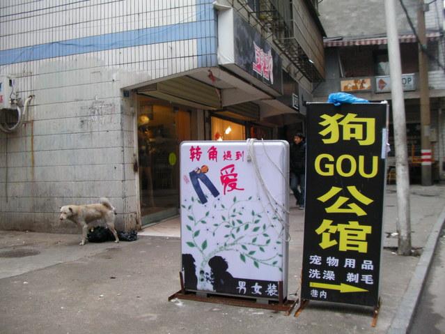 南京市場調査+上海万博_b0183063_16222697.jpg