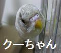 f0196665_073143.jpg