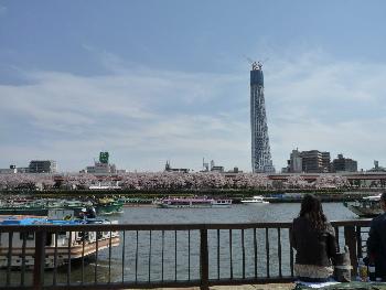 隅田川でランチ_d0029066_1738116.jpg