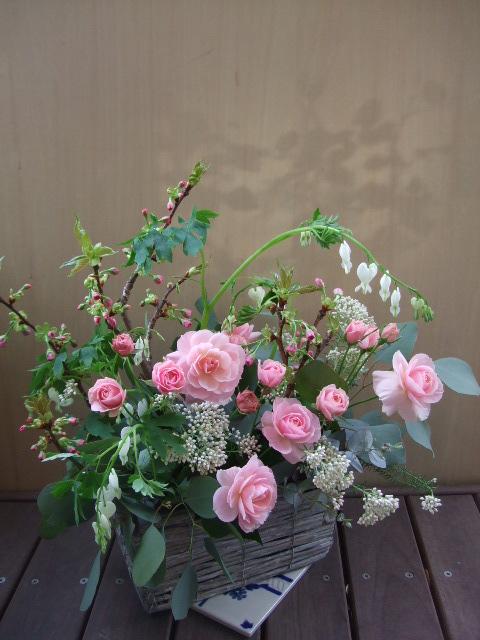オークリーフ(桜の季節に)_f0049672_1202568.jpg