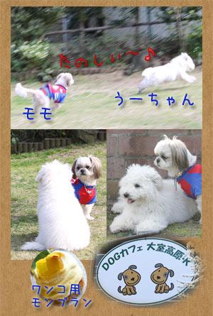 b0024183_2182551.jpg