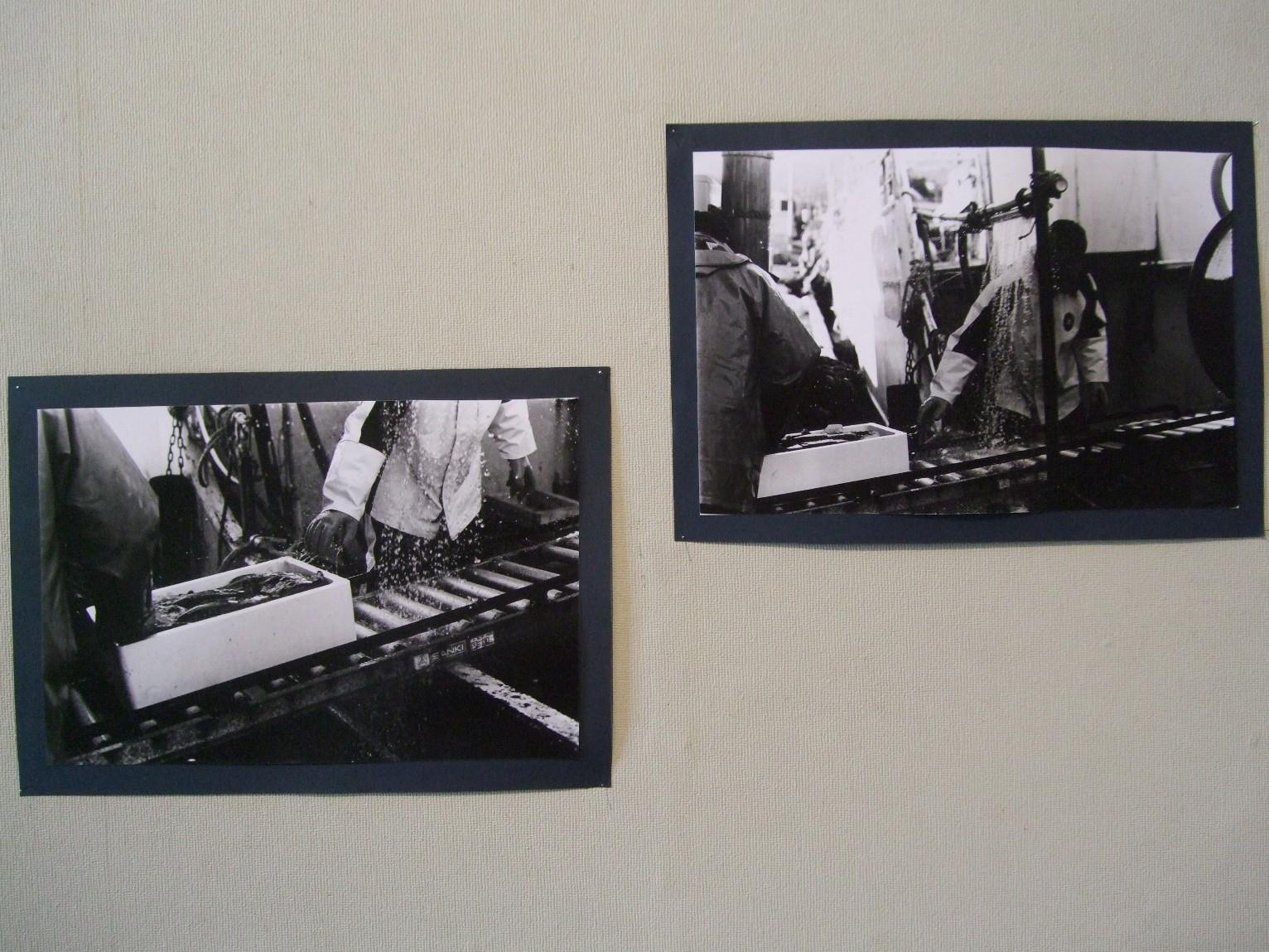 1252) 資料館 「藤女子大学写真部」 終了・3月9日(火)~3月14日(日)  _f0126829_1115571.jpg