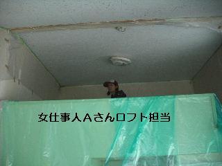 f0031037_20282741.jpg