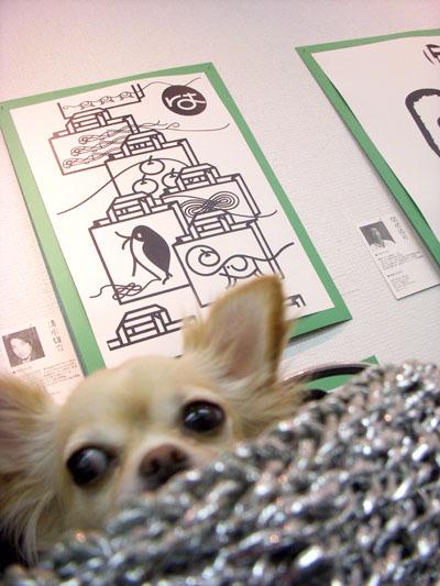 大阪・東京「LOHAS TYPO DE CARTA」展 会場の様子_f0196753_4563650.jpg