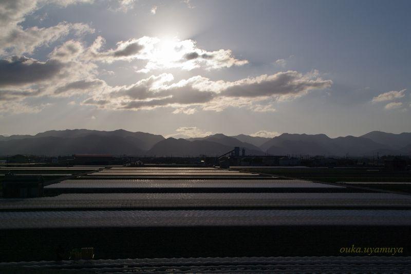 香川県・金毘羅さん_a0157263_053120.jpg