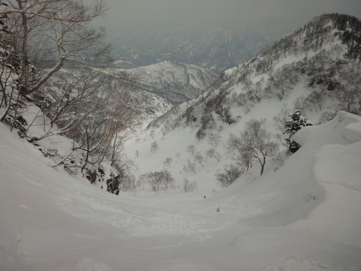 ヒヨヒヨ_c0006767_9392551.jpg