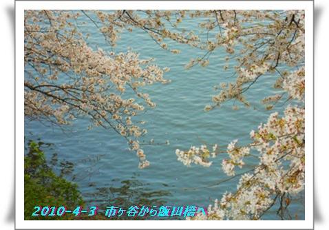 b0078675_8421112.jpg