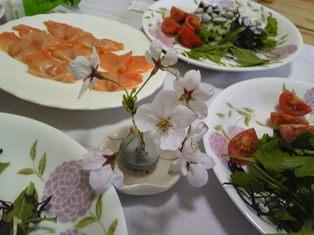 今年の桜 ~sakura 2010~_c0105183_22124114.jpg