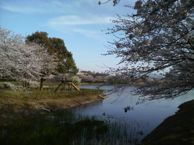 駕与丁公園(かよいちょうこうえん)に初めて行きました。_e0188087_4135614.jpg