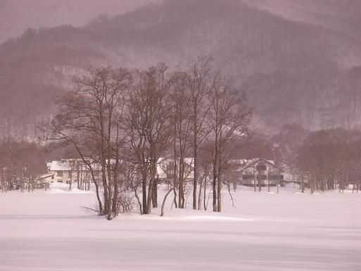 冬の写真2010。_c0141989_0315986.jpg