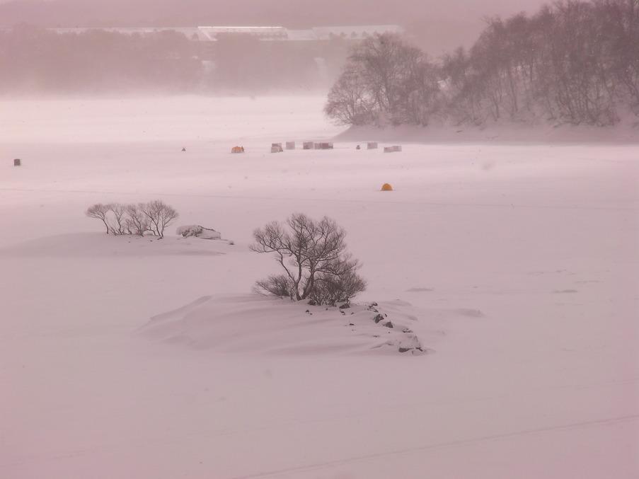 冬の写真2010。_c0141989_033033.jpg