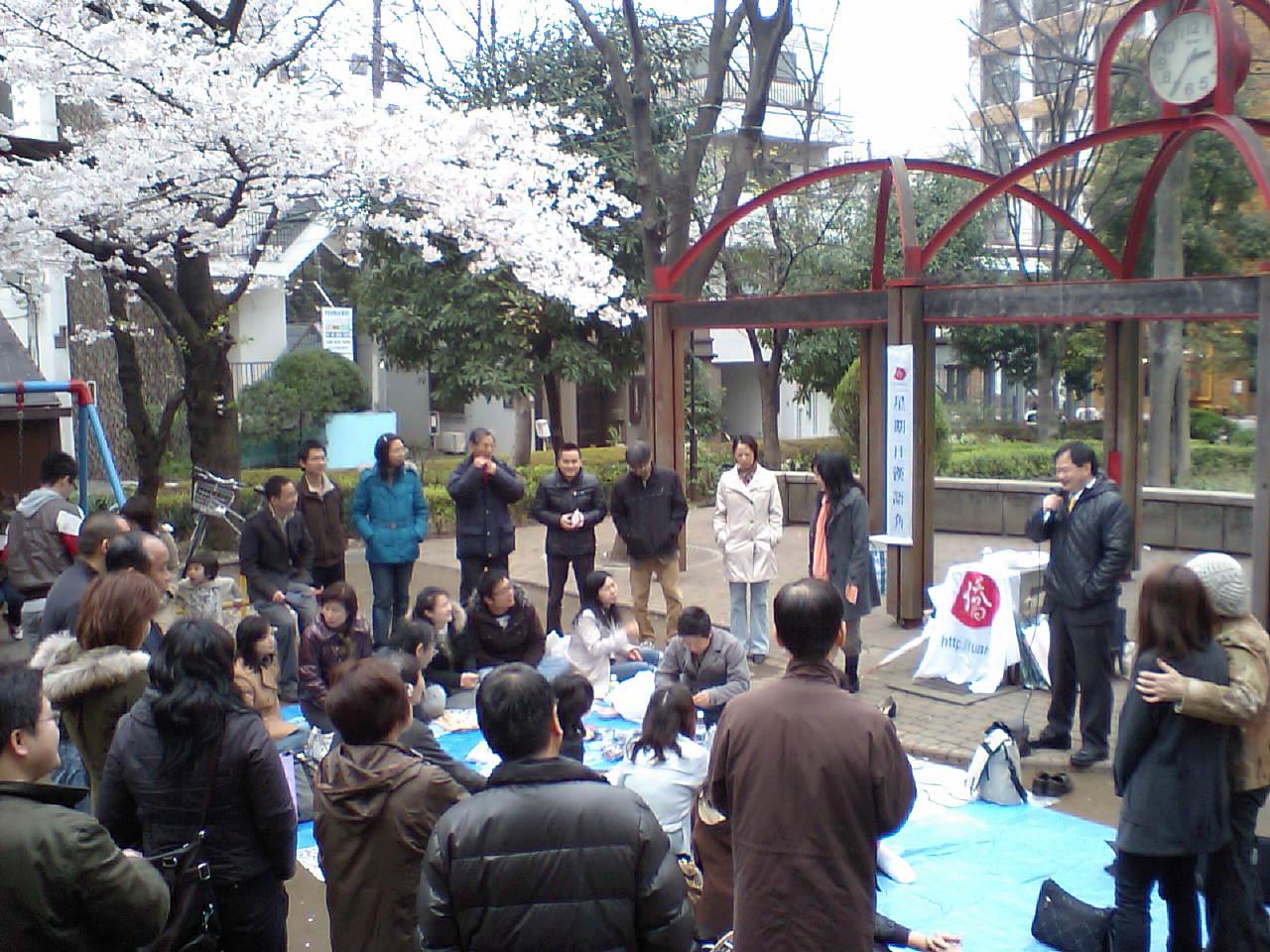 湖南人会主催の桜を見る会漢語角で開催写真その2_d0027795_14382374.jpg