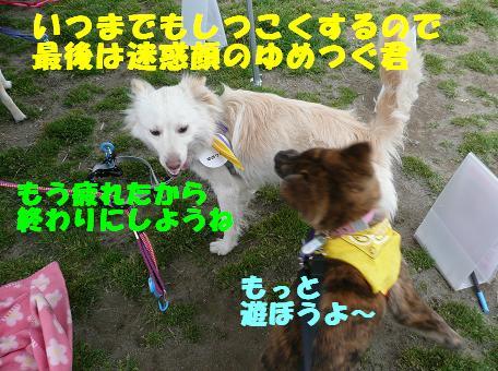 f0121712_16263249.jpg