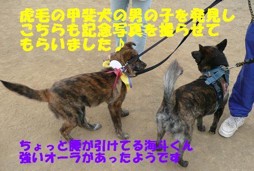f0121712_16275363.jpg