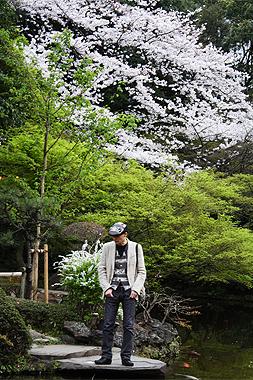 桜_f0170519_2384148.jpg