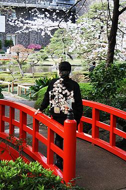 桜_f0170519_239974.jpg