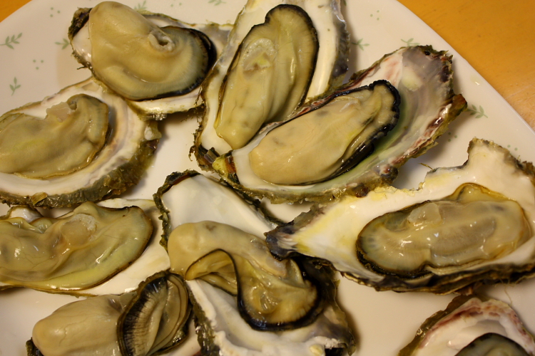 牡蠣を酒蒸しにして食す 4月5日_f0113639_19225865.jpg