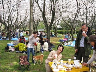 4月4日(日) お花見。_e0034141_1722749.jpg