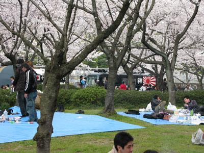 4月4日(日) お花見。_e0034141_17241442.jpg