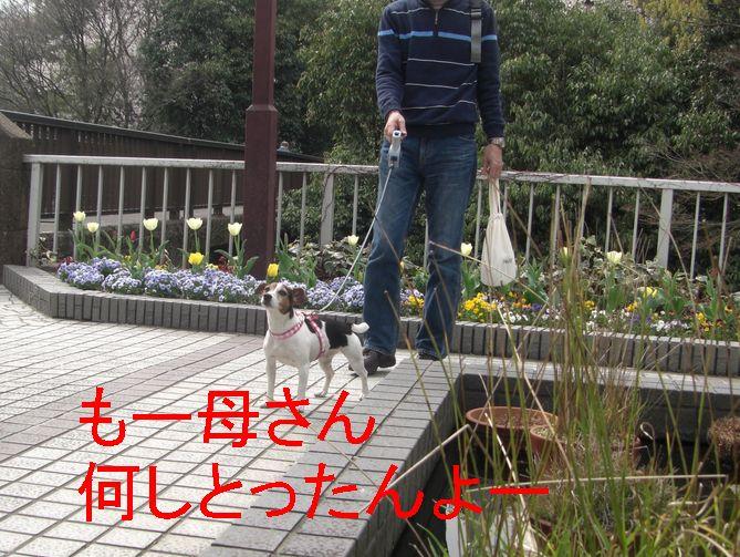 f0053952_17491925.jpg