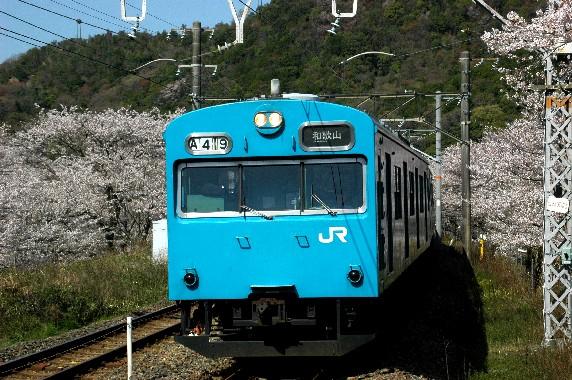 春爛漫_b0093754_0101234.jpg