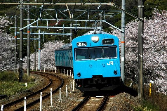 春爛漫_b0093754_01037.jpg