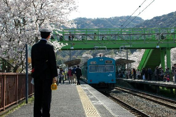 春爛漫_b0093754_0104449.jpg